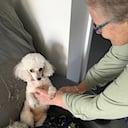 Joy Holbrook